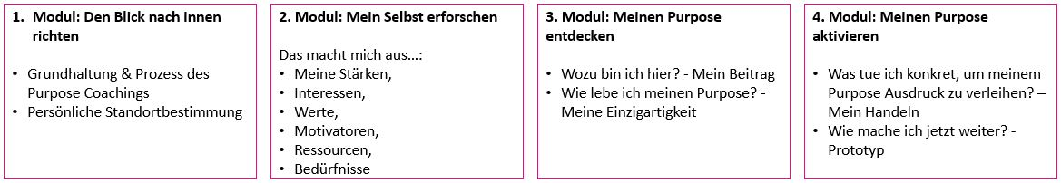 4 Module der Purpose Journey